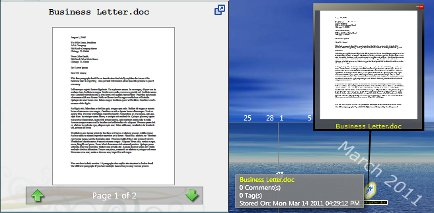 Word_preview_screen_shot